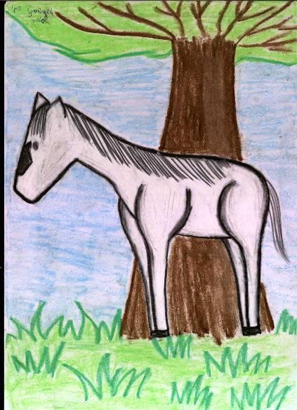 Koń jaki jest każdy widzi?
